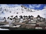 ਸਿਆਚਿੰਨ ਗਲੇਸ਼ੀਅਰ `ਤੇ ਭਾਰਤੀ ਫ਼ੌਜੀ ਜਵਾਨ ਯੋਗਾ ਕਰਦੇ ਹੋਏ