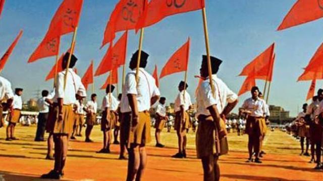 ਸਰਦਾਰ ਪਟੇਲ ਦੀ ਮੂਰਤੀ 'ਤੇ ਰਾਜਨੀਤੀ ਨਾ ਕਰੋ: RSS