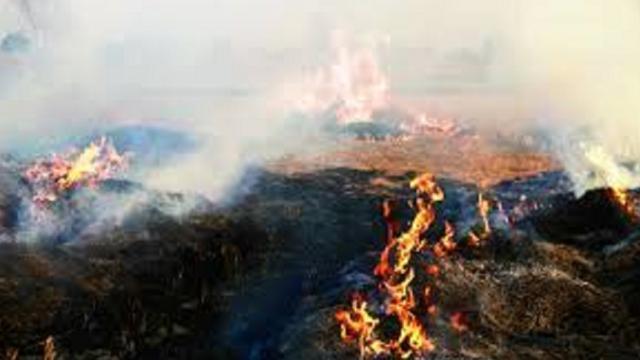 ਨਵੰਬਰ 2018 - 3 ਦਿਨਾਂ `ਚ ਪਰਾਲ਼ੀ ਨੂੰ ਅੱਗ ਦੀਆਂ 9,386 ਘਟਨਾਵਾਂ