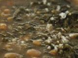 ਰੈਸਿਪੀ : ਕਿਵੇਂ ਬਣਾਈਏ ਅਰਬੀ ਦੇ ਪੱਤਿਆਂ ਦੀ ਮਸਾਲੇਦਾਰ ਸਬਜ਼ੀ