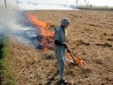 ਪੰਜਾਬ 'ਚ ਇੱਕੋ ਦਿਨ ਲੱਗੀ ਪਰਾਲ਼ੀ ਨੂੰ 6,668 ਥਾਵਾਂ 'ਤੇ ਅੱਗ, FIR ਸਿਰਫ਼ 327